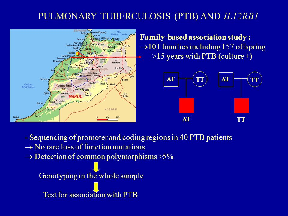 PULMONARY TUBERCULOSIS (PTB) AND IL12RB1 Family-based association study :  101 families including 157 offspring >15 years with PTB (culture +) - Sequencing of promoter and coding regions in 40 PTB patients  No rare loss of function mutations  Detection of common polymorphisms >5% Genotyping in the whole sample Test for association with PTB AT TT AT TT