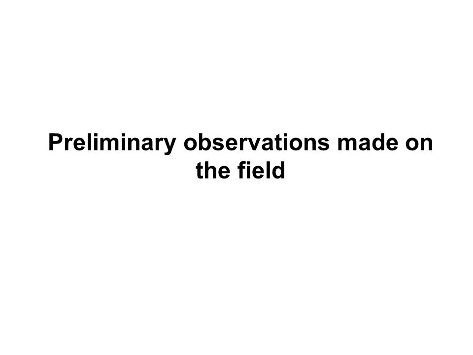 Preliminary observations made on the field