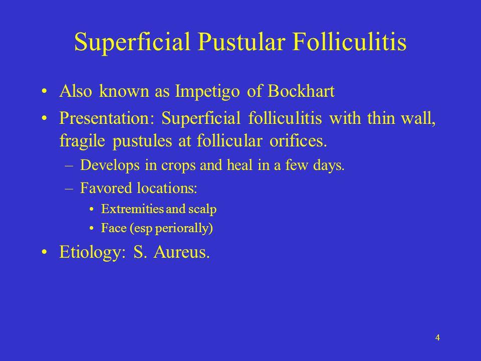 15 Pyogenic Paronychia