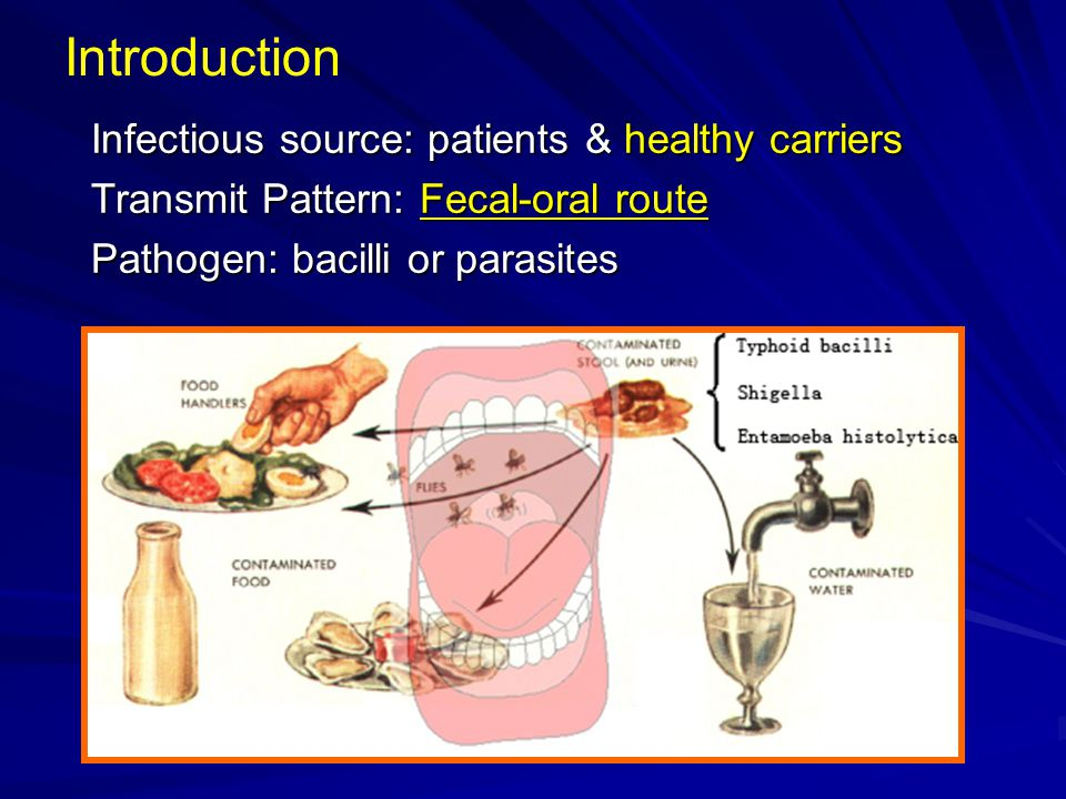 Introduction Infectious source: patients & healthy carriers Transmit Pattern: Fecal-oral route Pathogen: bacilli or parasites