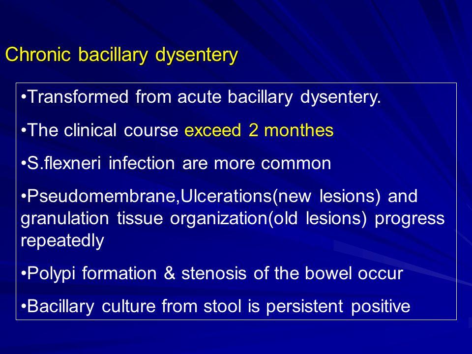 Chronic bacillary dysentery Transformed from acute bacillary dysentery.
