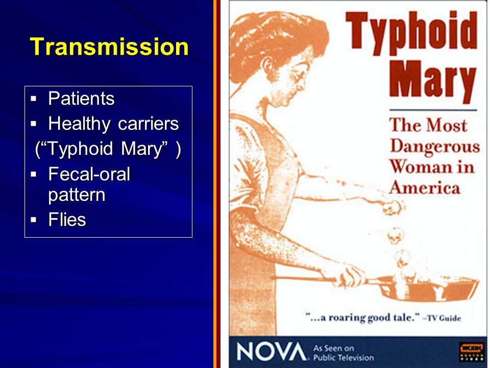 Transmission  Patients  Healthy carriers ( Typhoid Mary ) ( Typhoid Mary )  Fecal-oral pattern  Flies