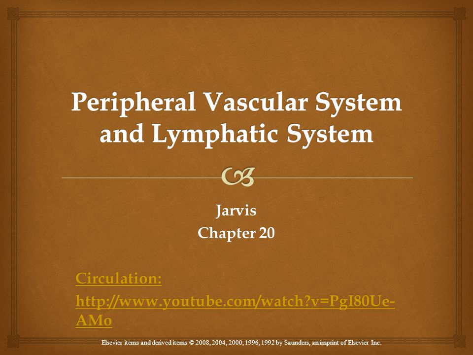 Chapter 20: Chapter 20: Peripheral Vascular System and Lymphatic System  1.