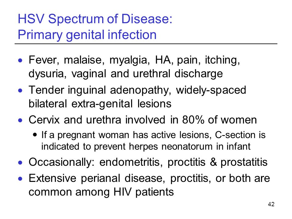 42 HSV Spectrum of Disease: Primary genital infection  Fever, malaise, myalgia, HA, pain, itching, dysuria, vaginal and urethral discharge  Tender i