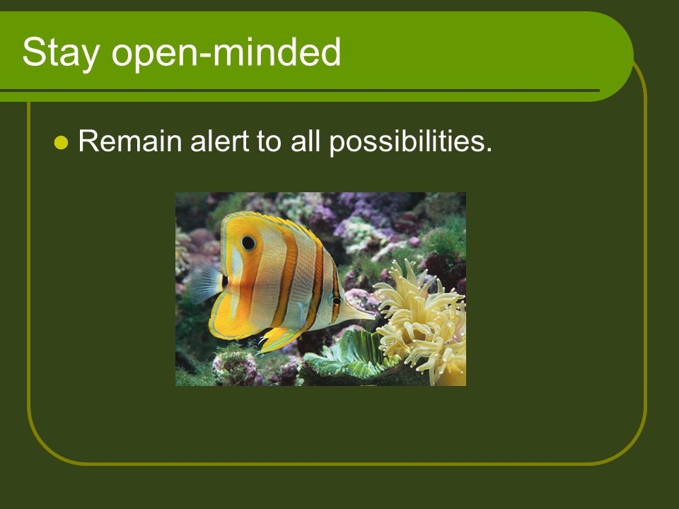 Stay open-minded Remain alert to all possibilities.