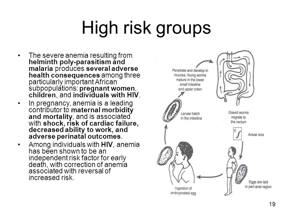 19 High risk groups The severe anemia resulting from helminth poly-parasitism and malaria produces several adverse health consequences among three par