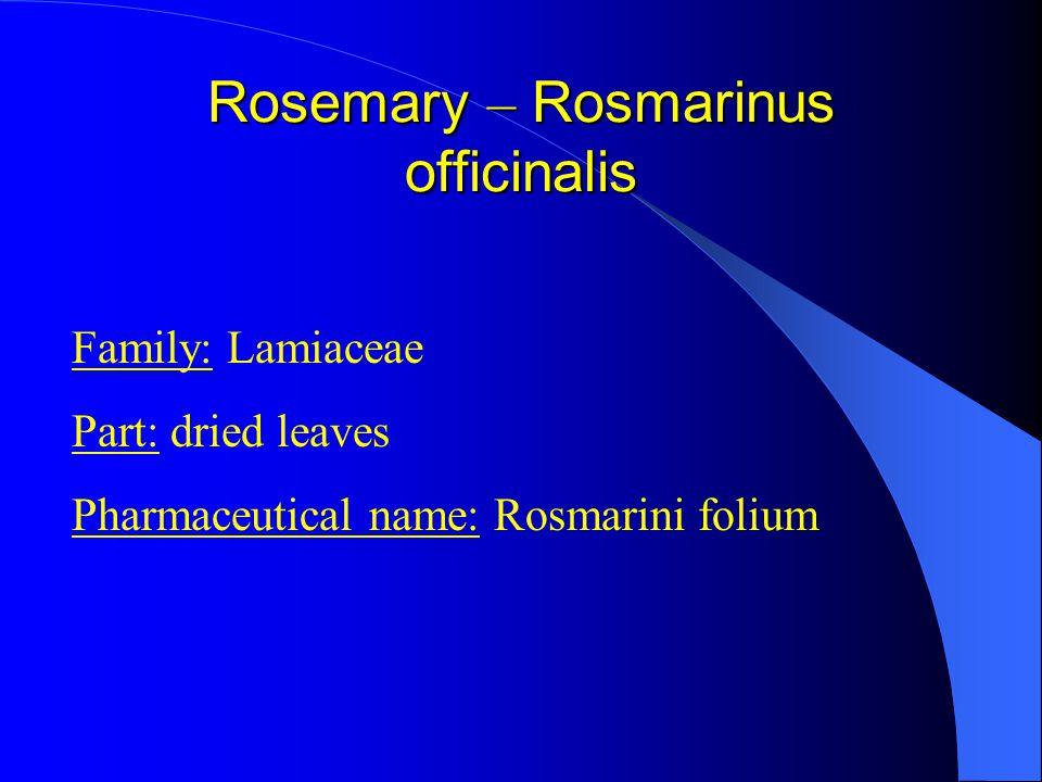 Family: Lamiaceae Part: dried leaves Pharmaceutical name: Rosmarini folium