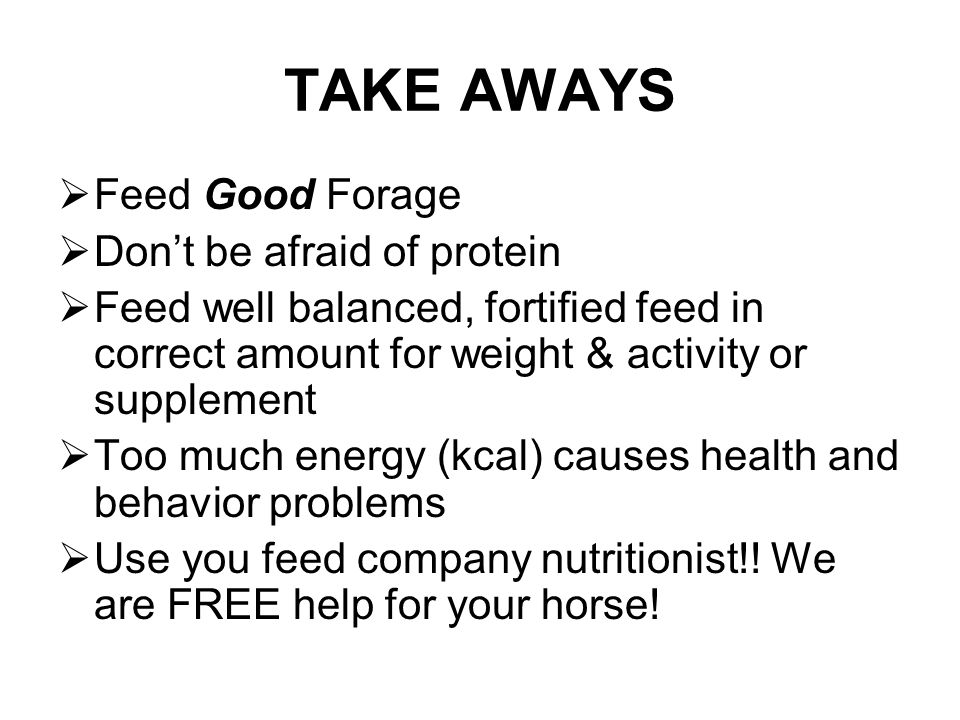 TAKE AWAYS  Feed Good Forage  Don't be afraid of protein  Feed well balanced, fortified feed in correct amount for weight & activity or supplement  Too much energy (kcal) causes health and behavior problems  Use you feed company nutritionist!.