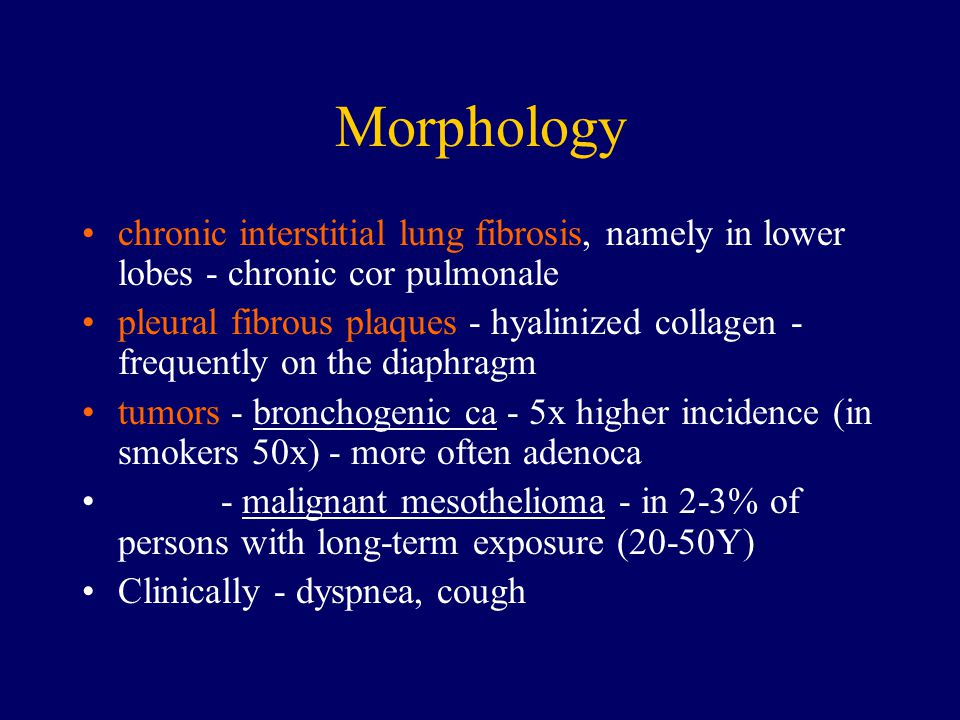 Morphology chronic interstitial lung fibrosis, namely in lower lobes - chronic cor pulmonale pleural fibrous plaques - hyalinized collagen - frequentl