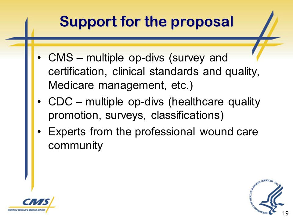19 Support for the proposal CMS – multiple op-divs (survey and certification, clinical standards and quality, Medicare management, etc.) CDC – multiple op-divs (healthcare quality promotion, surveys, classifications) Experts from the professional wound care community