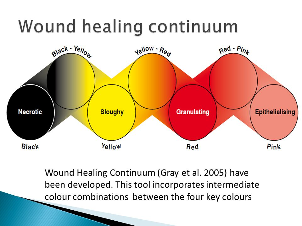 Wound Healing Continuum (Gray et al. 2005) have been developed. This tool incorporates intermediate colour combinations between the four key colours