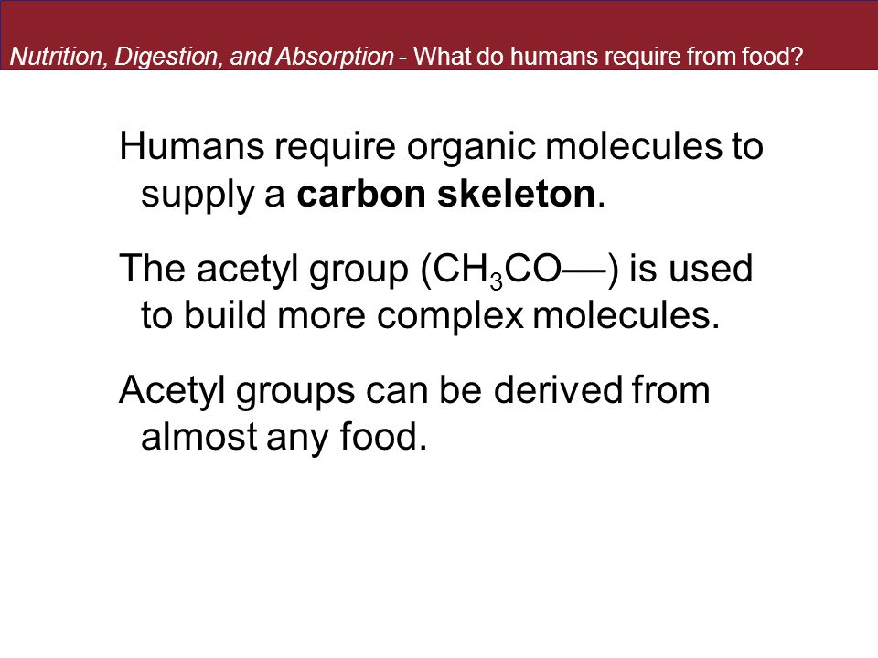 Humans require organic molecules to supply a carbon skeleton. The acetyl group (CH 3 CO––) is used to build more complex molecules. Acetyl groups can