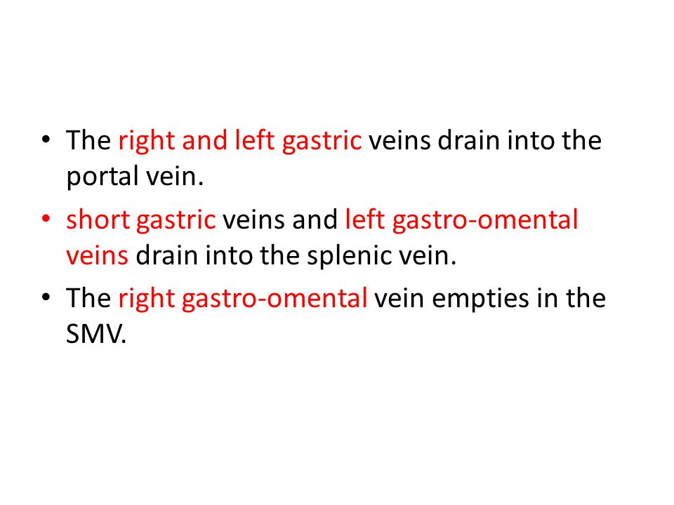 The right and left gastric veins drain into the portal vein.