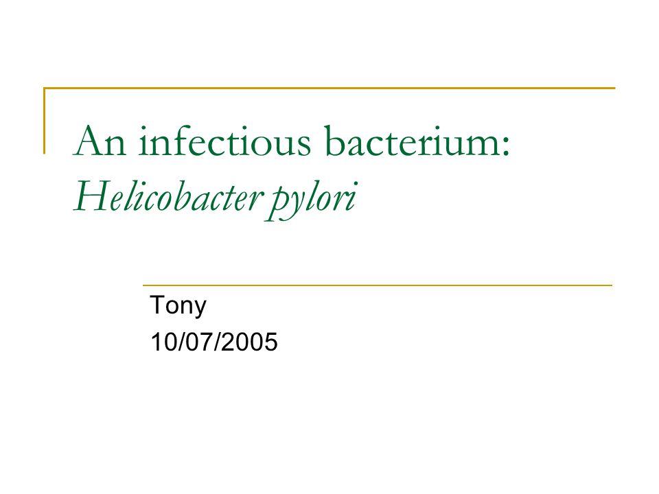 An infectious bacterium: Helicobacter pylori Tony 10/07/2005