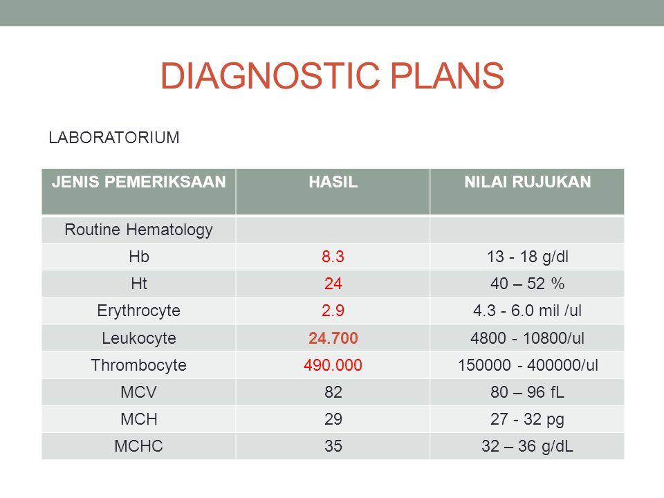 DIAGNOSTIC PLANS JENIS PEMERIKSAANHASILNILAI RUJUKAN Routine Hematology Hb8.313 - 18 g/dl Ht2440 – 52 % Erythrocyte2.94.3 - 6.0 mil /ul Leukocyte24.70
