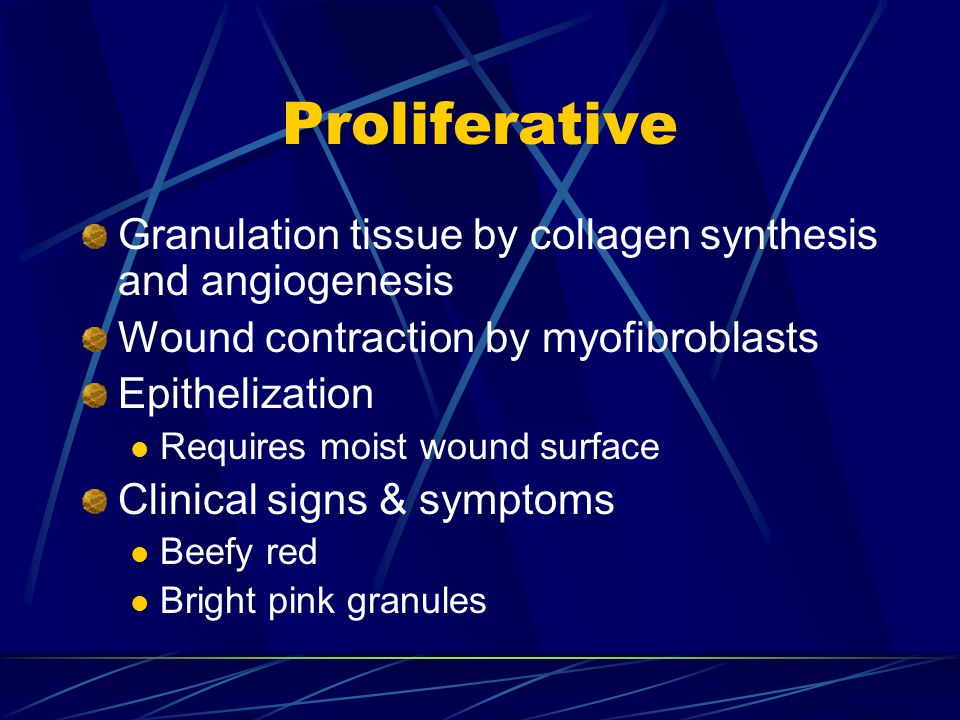 Proliferative Granulation tissue by collagen synthesis and angiogenesis Wound contraction by myofibroblasts Epithelization Requires moist wound surfac