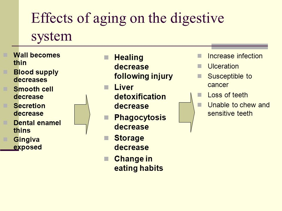 Effects of aging on the digestive system Wall becomes thin Blood supply decreases Smooth cell decrease Secretion decrease Dental enamel thins Gingiva