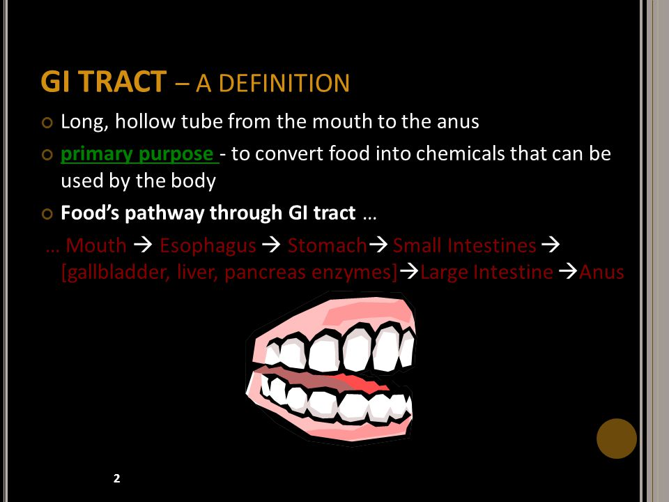 GI TRACT – A DEFINITION Long, hollow tube from the mouth to the anus primary purpose - to convert food into chemicals that can be used by the body Food's pathway through GI tract … … Mouth  Esophagus  Stomach  Small Intestines  [gallbladder, liver, pancreas enzymes]  Large Intestine  Anus 2