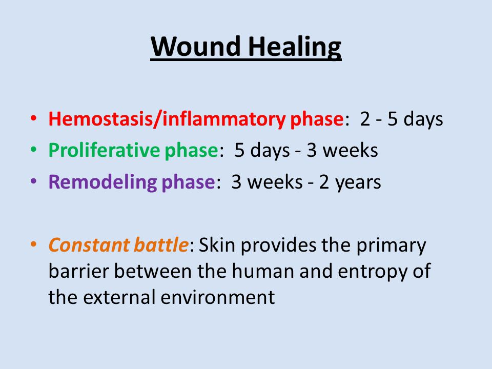 Wound Healing Hemostasis/inflammatory phase: 2 - 5 days Proliferative phase: 5 days - 3 weeks Remodeling phase: 3 weeks - 2 years Constant battle: Skin provides the primary barrier between the human and entropy of the external environment