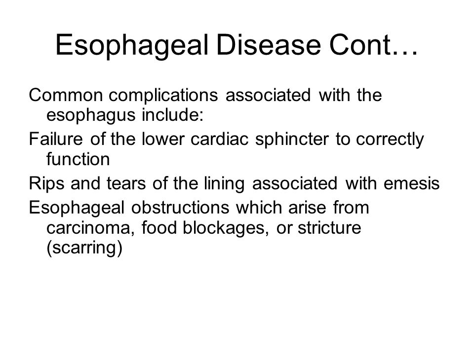 Esophageal Disease Cont… Common complications associated with the esophagus include: Failure of the lower cardiac sphincter to correctly function Rips and tears of the lining associated with emesis Esophageal obstructions which arise from carcinoma, food blockages, or stricture (scarring)