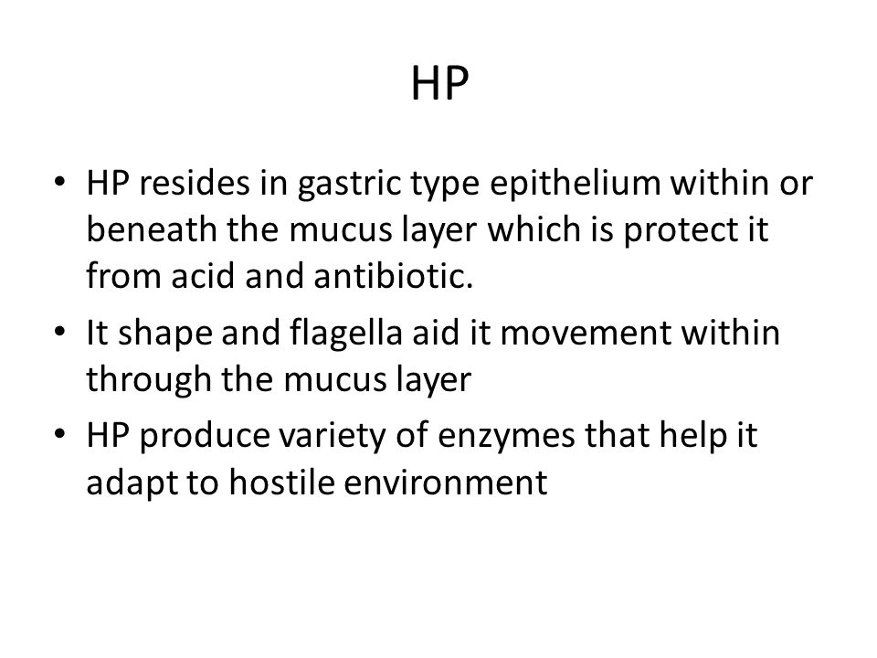 HP HP resides in gastric type epithelium within or beneath the mucus layer which is protect it from acid and antibiotic.