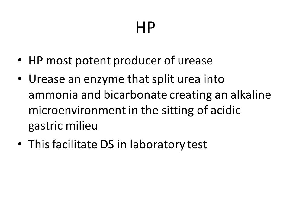 HP HP most potent producer of urease Urease an enzyme that split urea into ammonia and bicarbonate creating an alkaline microenvironment in the sitting of acidic gastric milieu This facilitate DS in laboratory test