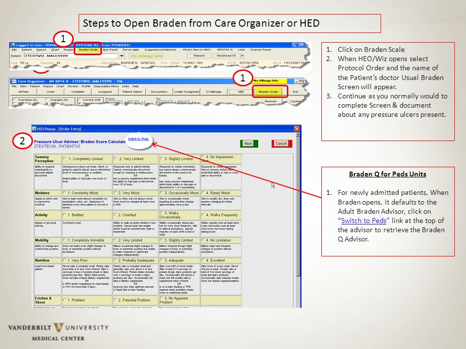 1 Steps to Open Braden from Care Organizer or HED 1.Click on Braden Scale 2.When HEO/Wiz opens select Protocol Order and the name of the Patient's doctor Usual Braden Screen will appear.