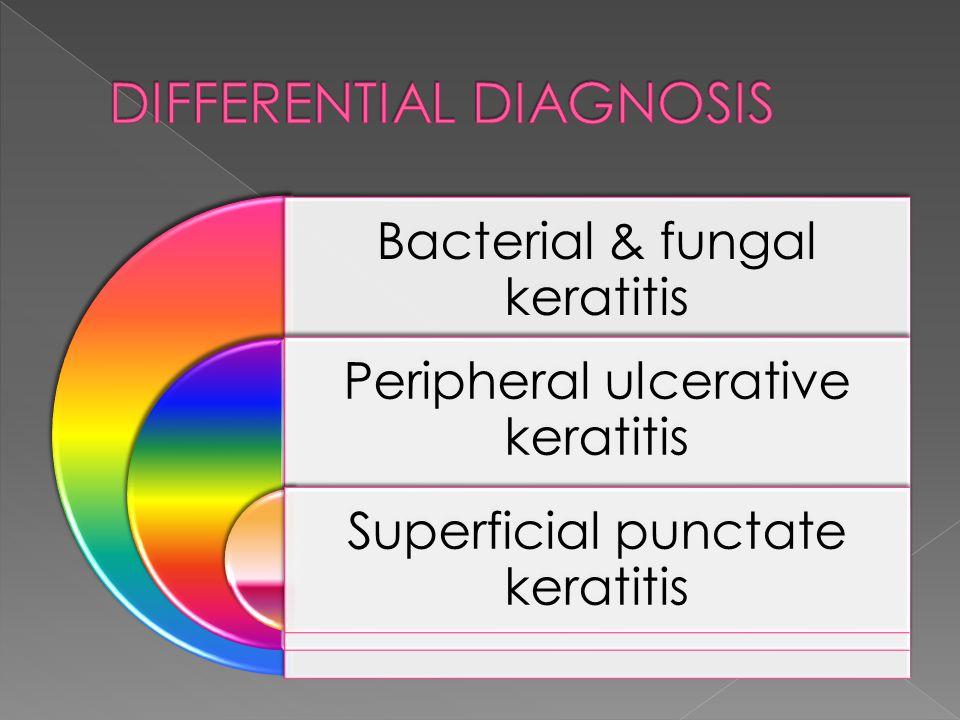Bacterial & fungal keratitis Peripheral ulcerative keratitis Superficial punctate keratitis