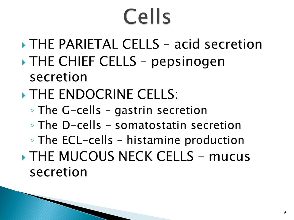  THE PARIETAL CELLS – acid secretion  THE CHIEF CELLS – pepsinogen secretion  THE ENDOCRINE CELLS: ◦ The G-cells – gastrin secretion ◦ The D-cells