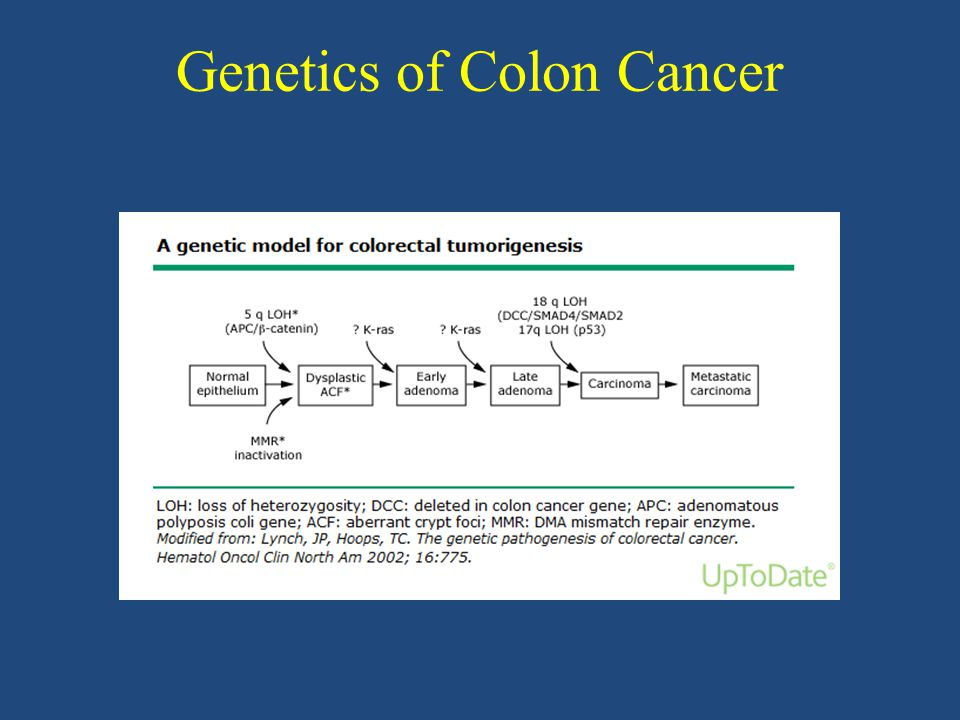 Genetics of Colon Cancer