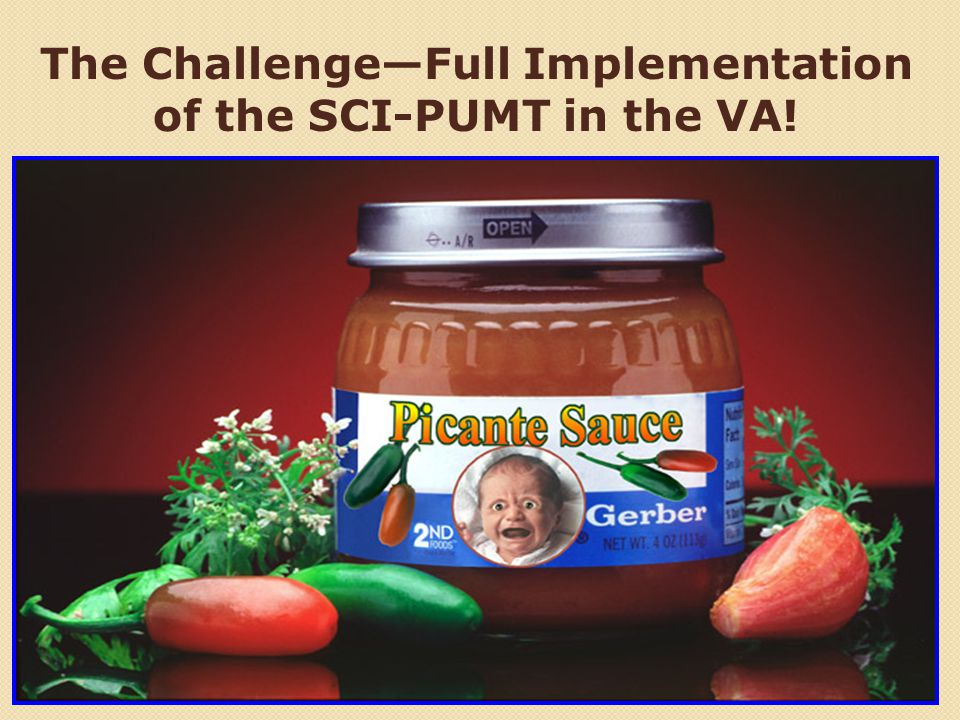 The Challenge—Full Implementation of the SCI-PUMT in the VA!