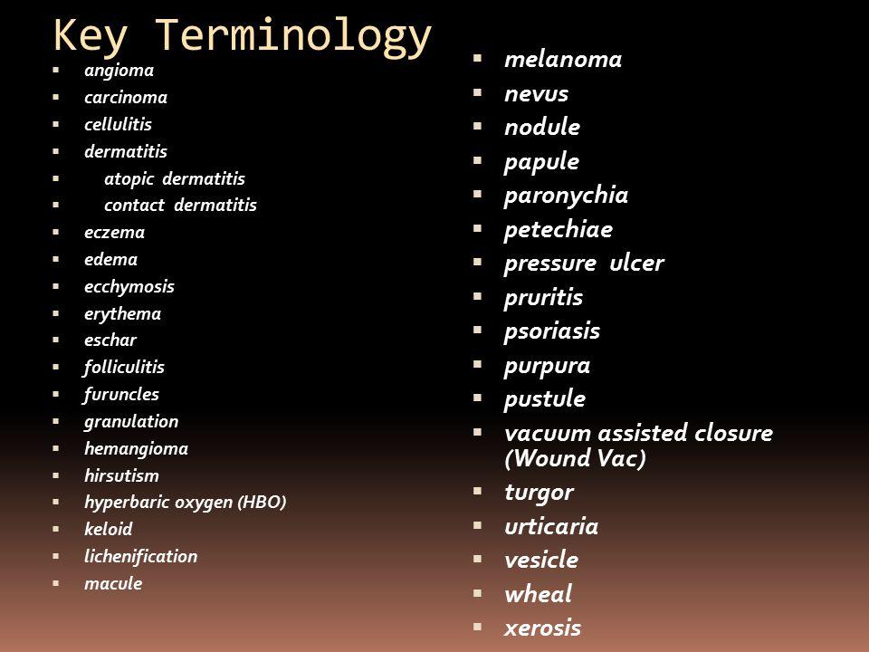 Key Terminology  angioma  carcinoma  cellulitis  dermatitis  atopic dermatitis  contact dermatitis  eczema  edema  ecchymosis  erythema  es