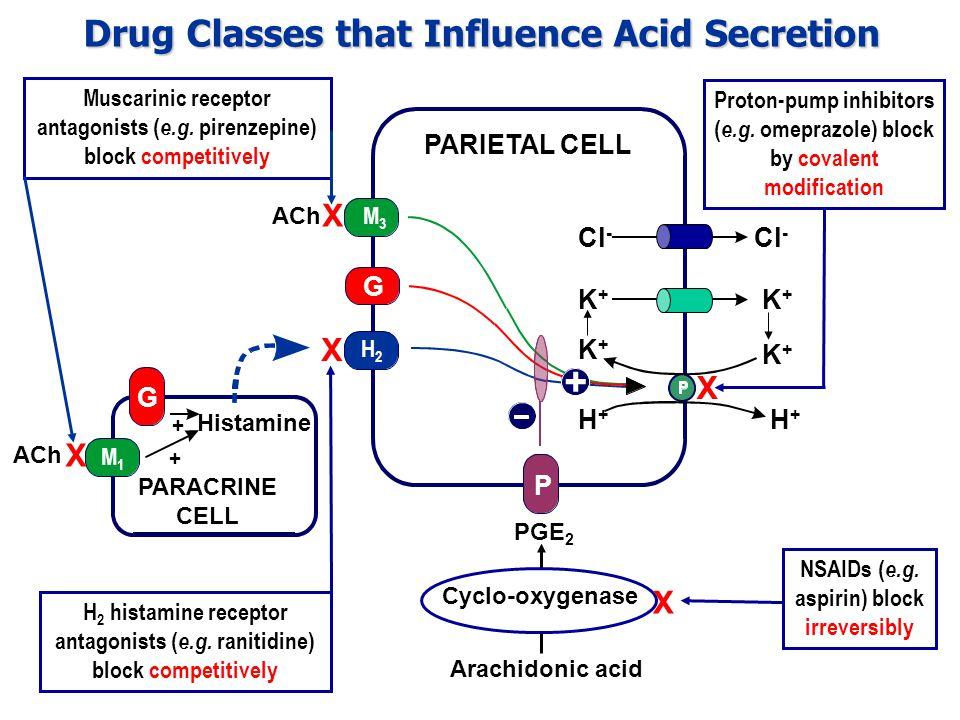 PARIETAL CELL G M3M3 ACh + P H2H2 Arachidonic acid Cyclo-oxygenase NSAIDs ( e.g.