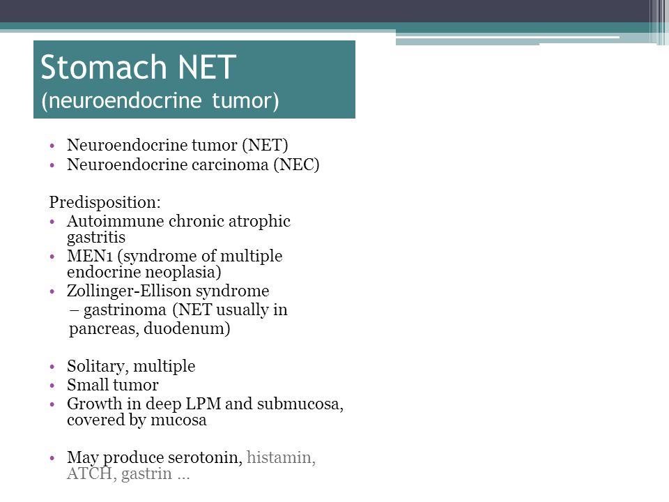 Stomach NET (neuroendocrine tumor) Neuroendocrine tumor (NET) Neuroendocrine carcinoma (NEC) Predisposition: Autoimmune chronic atrophic gastritis MEN1 (syndrome of multiple endocrine neoplasia) Zollinger-Ellison syndrome – gastrinoma (NET usually in pancreas, duodenum) Solitary, multiple Small tumor Growth in deep LPM and submucosa, covered by mucosa May produce serotonin, histamin, ATCH, gastrin …