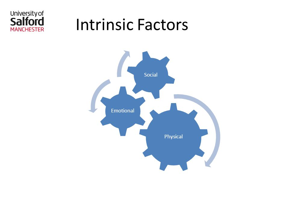 Intrinsic Factors Physical Emotional Social