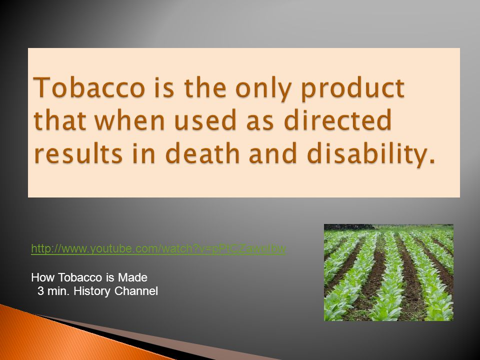 http://www.youtube.com/watch?v=pPtCZawoIbw How Tobacco is Made 3 min. History Channel
