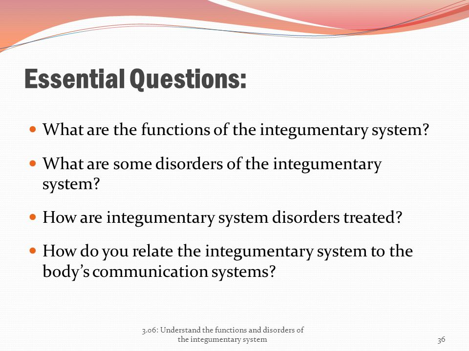 Essential Questions: What are the functions of the integumentary system? What are some disorders of the integumentary system? How are integumentary sy