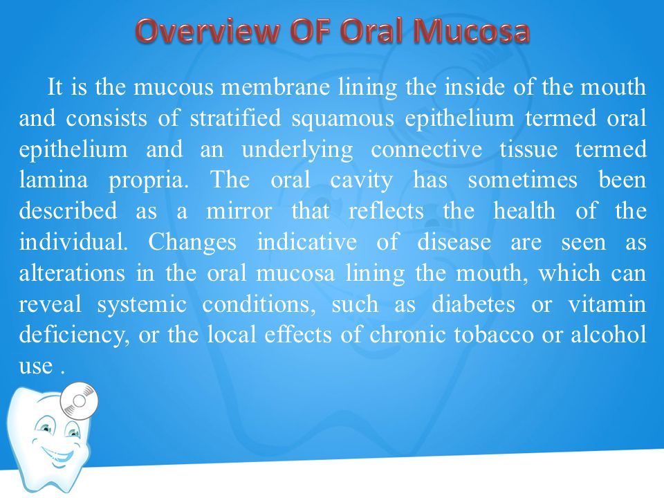 It is the mucous membrane lining the inside of the mouth and consists of stratified squamous epithelium termed oral epithelium and an underlying conne