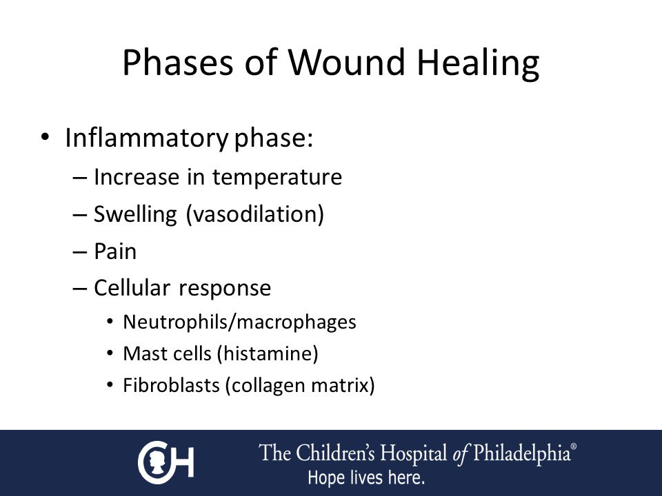 Phases of Wound Healing Inflammatory phase: – Increase in temperature – Swelling (vasodilation) – Pain – Cellular response Neutrophils/macrophages Mast cells (histamine) Fibroblasts (collagen matrix)
