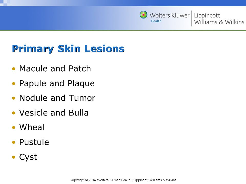 Copyright © 2014 Wolters Kluwer Health | Lippincott Williams & Wilkins Primary Skin Lesions Macule and Patch Papule and Plaque Nodule and Tumor Vesicl