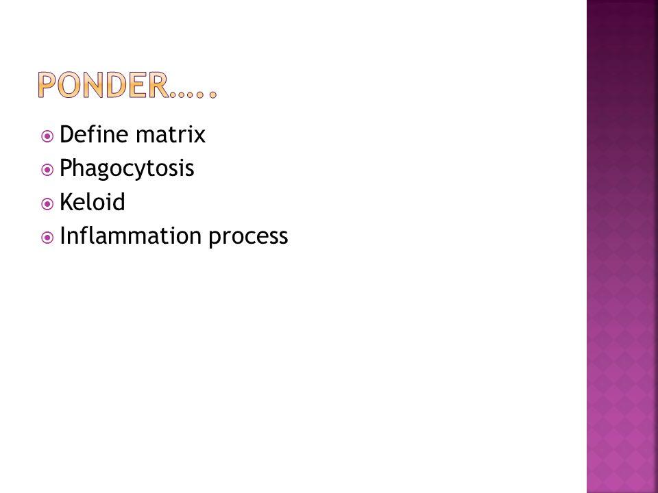 Define matrix  Phagocytosis  Keloid  Inflammation process