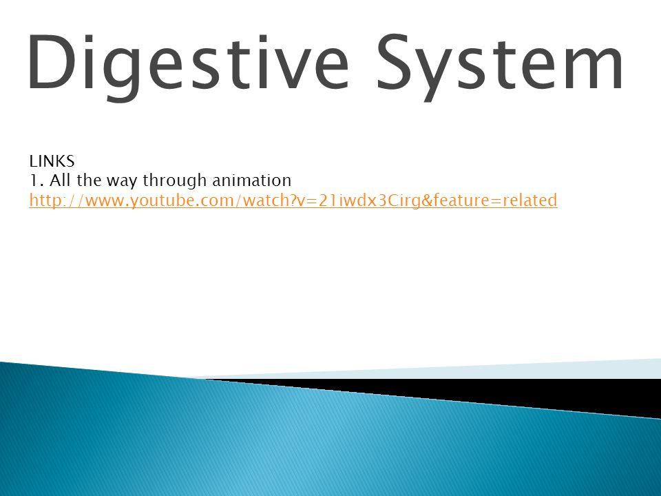 Digestive System LINKS 1.