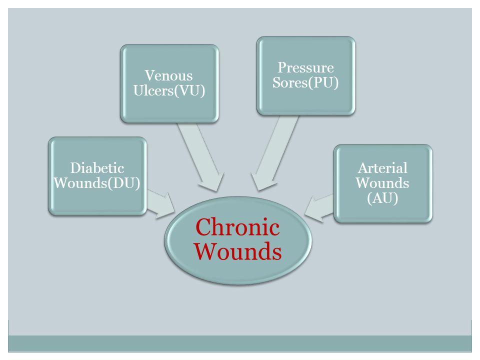 Chronic Wounds Diabetic Wounds(DU) Venous Ulcers(VU) Pressure Sores(PU) Arterial Wounds (AU)