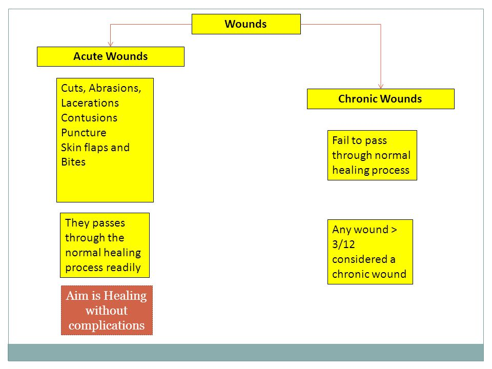 Wounds Acute Wounds Cuts, Abrasions, Lacerations Contusions Puncture Skin flaps and Bites Any wound > 3/12 considered a chronic wound They passes thro