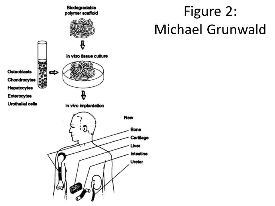 Figure 2: Michael Grunwald