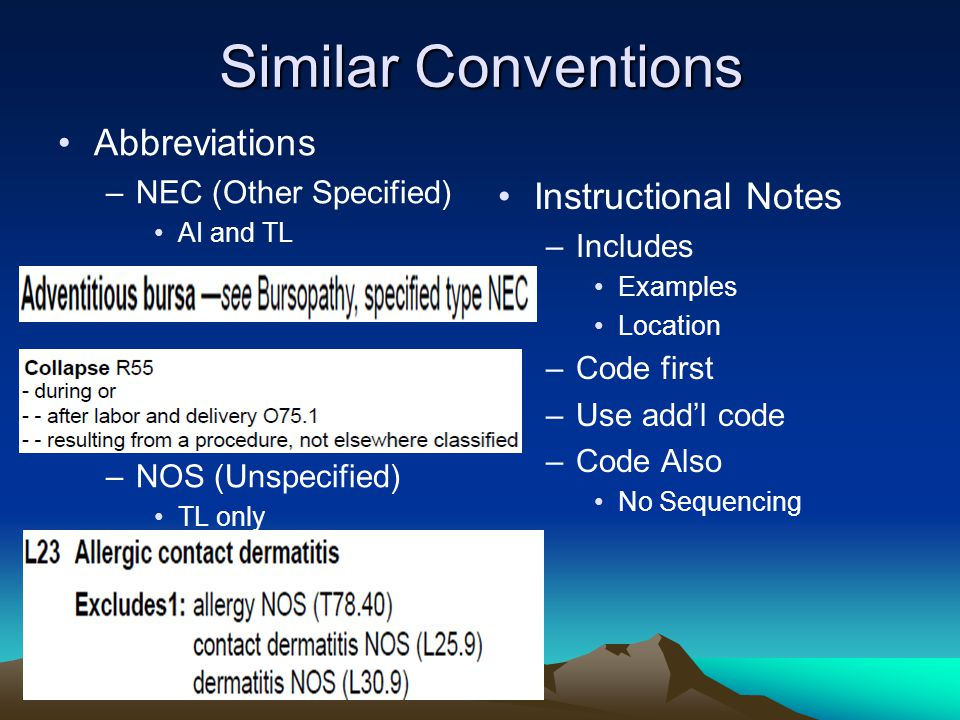Similar Conventions Abbreviations –NEC (Other Specified) AI and TL –NOS (Unspecified) TL only Instructional Notes –Includes Examples Location –Code first –Use add'l code –Code Also No Sequencing