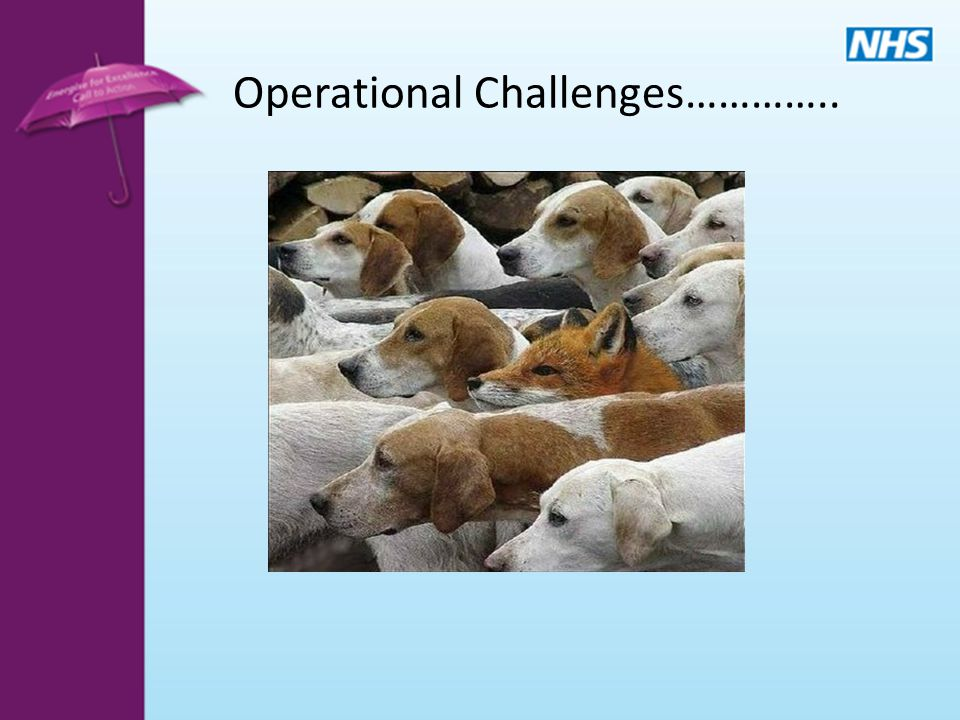 Operational Challenges…………..