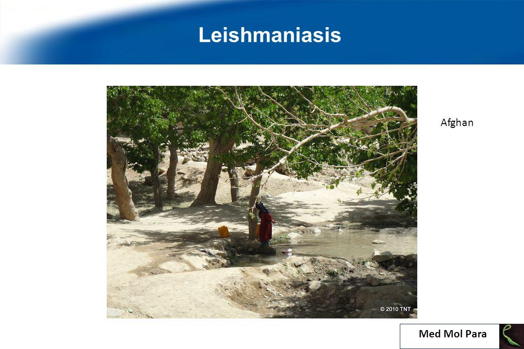 Leishmaniasis Afghan Med Mol Para