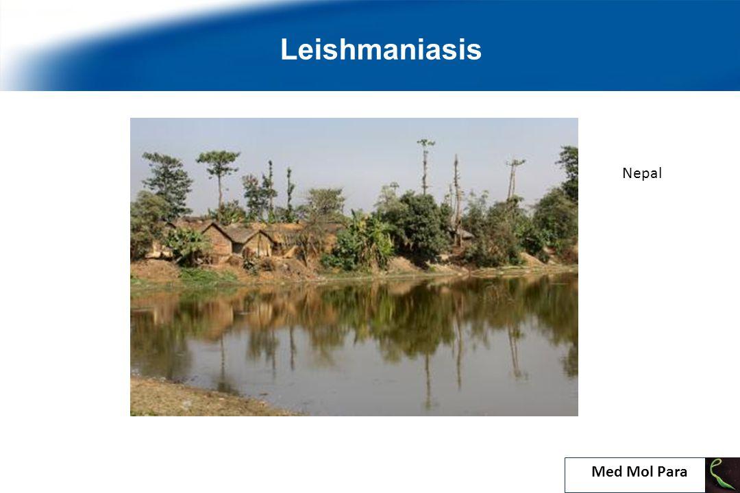 22 Leishmaniasis Nepal Med Mol Para