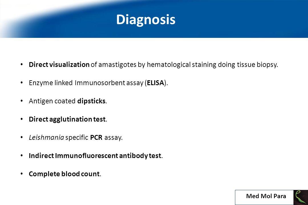 Direct visualization of amastigotes by hematological staining doing tissue biopsy.